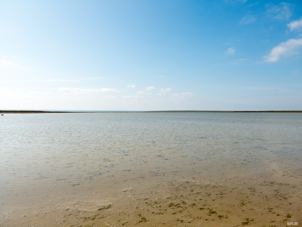 Озеро Маныч-Гудило. Мелкое, соленое.